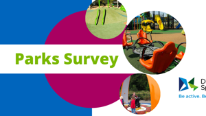 Disability Sport NI Playground Survey